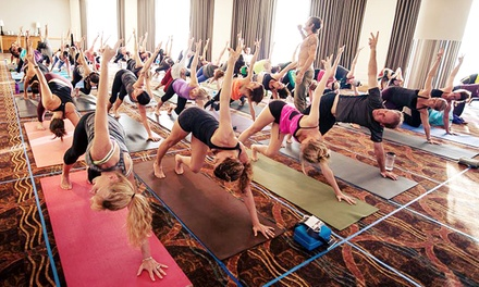 10 or 20 Yoga Classes at Yoga Shelter (Up to 83% Off)