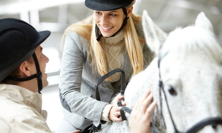 Horseback-Riding Lessons at Lakeside Stables (Up to 53% Off). Four Options Available.