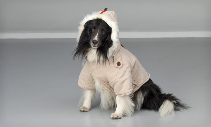 Pet Ego Dog Rich Dog Winter Coat: Pet Ego Dog Rich Dog Winter Coat (Up to 51% Off). Multiple Colors and Sizes Available. Free Shipping.