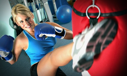 One Month of Mixed-Martial-Arts Classes at Valor Martial Arts ($85 Value)