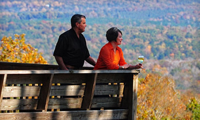 Stony Mountain Vineyards - East Albemarle: $12 for a Winery Tour for Two with Wine Tasting and Glass of Wine at Stony Mountain Vineyards ($26 Value)