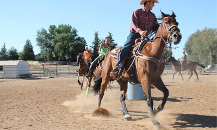 ML Performance Horses - Clovis: $35 for a Basic Lesson and Trail Ride for Two or Horsemanship Class for Two at ML Performance Horses ($70 Value)