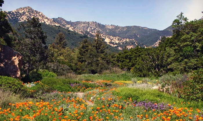Santa Barbara Botanic Garden - Mission Canyon: One-Year Family or Individual Membership to Santa Barbara Botanic Garden (Up to 51% Off)