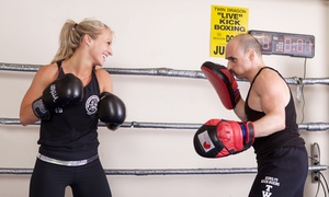 Twin Dragon North: 5 or 10 Kickboxing Classes or One Month of Unlimited Kickboxing Classes at Twin Dragon North (Up to 91% Off)