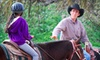 JM Performance Horse - Sunol: Two or Four Horseback-Riding Lessons or a Five-Day Horsemanship Summer Camp at JM Performance Horse (Up to 51% Off)