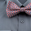 Berlioni Bow Tie and Pocket Square Set