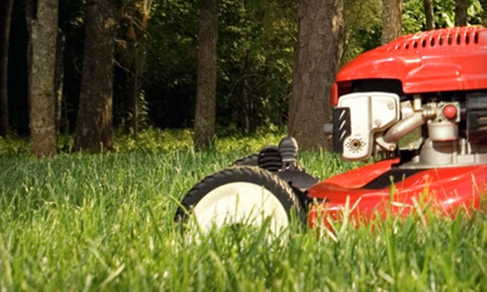 Danik's Landscape and Lawncare - Granger: Four or Six Weeks of Lawn-Mowing Services from Danik's Landscape and Lawncare (Up to 52% Off)