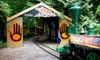 OOB Klahowya Village in Stanley Park - Stanley Park: Spirit Catcher Train Ride and Craft Workshop for Two, Four, or Eight at Klahowya Village in Stanley Park (Half Off)