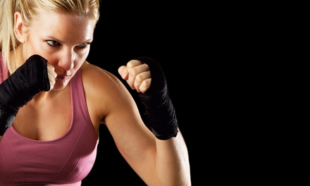 Four or Eight Boot-Camp or Kickboxing Classes or Four  Personal-Training Sessions   (Up to 75% Off)