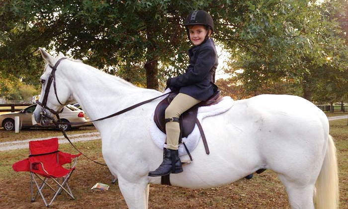 Towne Lake Equestrian Club - Woodstock: Private Horseback-Riding Lessons at Towne Lake Equestrian Club (Up to 53% Off). Two Options Available.