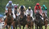 Potomac Hunt Races - 3: $99 for a Rail-Side Parking Space at the Potomac Hunt Races on May 19 ($200 Value)