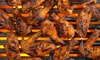 Up to 60% Off American Food at Sports Grill
