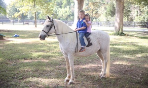 Lenux Stables & Riding Academy, Inc.: Three or Six 30-Minute Beginners' Horseback-Riding Lessons at Lenux Stables & Riding Academy, Inc. (40% Off)
