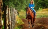 Healing Horse Ranch - Dripping Springs-Wimberley: Two Horseback-Riding Lessons at Healing Horse Ranch (70% Off)