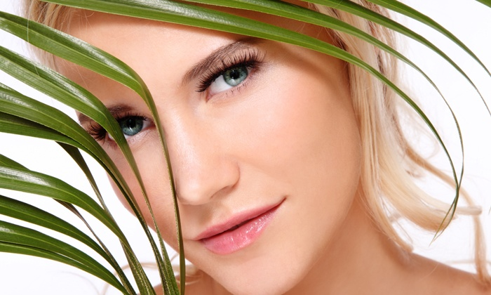 Absolute Skin & Body Care - Novi: Three or Six Laser Skin-Rejuvenation or Acne Treatments at Absolute Skin & Body Care (Up to 84% Off)