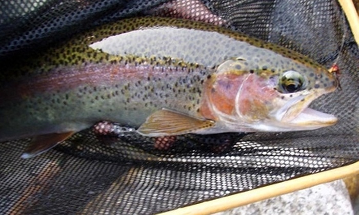 Sierra Fly Fisher Tours - Bass Lake: $199 for a Guided Fly-Fishing Trip for Two from Sierra Fly Fisher Tours ($400 Value)