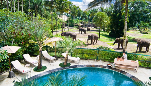 Bali: 5* Lodge + Elephant Safari 0