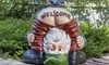 Funny Welcome Gnome