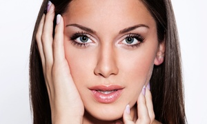 Permanent Makeup by Jeffery Lyle Segal: Permanent Makeup for the Eyes, Brows, or Lip-Liner at Permanent Makeup by Jeffery Lyle Segal (Up to 43% Off)