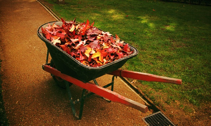 Finer Lawn and Landscaping - Cincinnati: $199 for $400 Worth of Fall Landscaping Services from Finer Lawn and Landscaping