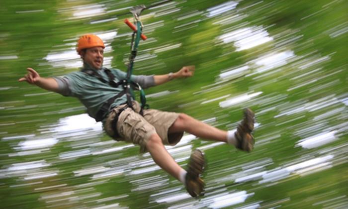 ZipZone - ZipZone Canopy Tours: Zipline Tour for Two, Four, or Six at ZipZone (Up to 52% Off)