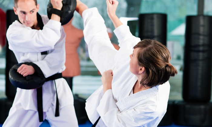 Premier Martial Arts - Forestdale: 50% Off Three Months of Unlimited Martial Arts Classes at Premier Martial Arts and Fitness