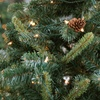 Up to 56% Off Home-Delivered Christmas Trees