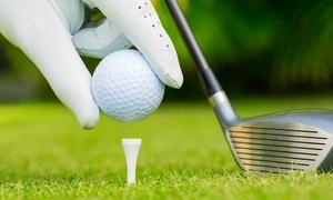 le Vigne: 3 o 10 lezioni di golf con ingresso al campo pratica (sconto fino 87%)
