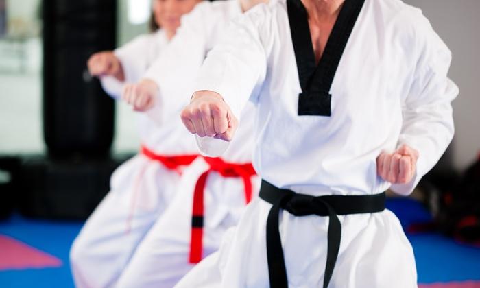 3 Tiger Martial Arts School - Multiple Locations: 5 or 10 Martial-Arts Classes with Uniform at 3 Tiger Martial Arts School (Up to 86% Off)