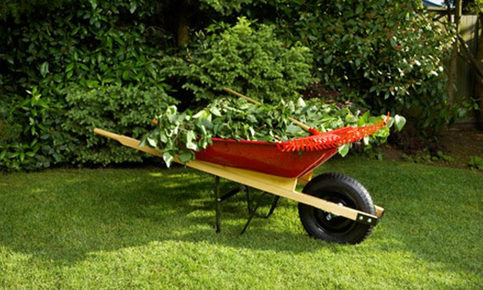 Victory Gardens of Kentucky - Lyndon: $20 for a Lawn-Care Package with Mowing and Edging from Victory Gardens of Kentucky ($40 Value). Two Options Available.
