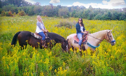Trail Ride for 1 (a $115 total value) - Equestrian Ridge Farm in New Plymouth