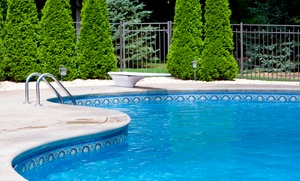 DW pools: One Month of Standard Pool Maintenance with Optional Filter Cleaning from DW pools (Up to 55% Off)
