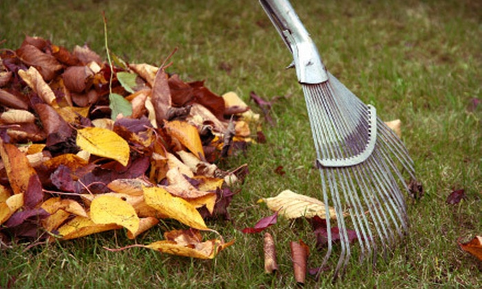 D & H Landscaping - Milwaukee: Two or Four Hours of Fall Lawn Cleanup from D & H Landscaping (Up to 54% Off)