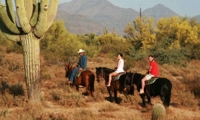 HIGH MOUNTAIN TRAIL RIDES - Phoenix: 60- or 90-Minute Guided-Horseback Trail Ride from High Mountain Trail Rides (43% Off)