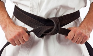 ATA Black Belt Academy: Two Weeks of Martial-Arts Classes, or Four Weeks of Classes with Uniform at ATA Black Belt Academy (Up to 53% Off)