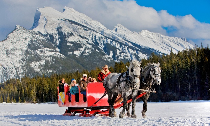 Holiday on Horseback - Banff: Winter Sleigh Ride for Two or Four from Holiday on Horseback (Up to 40% Off)