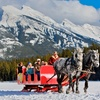 Up to 40% Off Winter Sleigh Ride