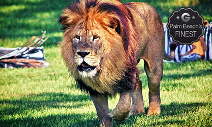 Lion Country Safari - Western West Palm Beach: $19 for a Safari Day with Parking at Lion County Safari (Up to $33.50 Value)