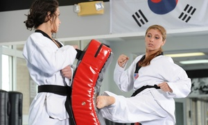 Nihon Karate-Do Misogi-Kan: 10 or 20 Karate Classes at Nihon Karate-Do Misogi-Kan (Up to 76% Off)