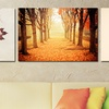 The Best of Autumn Scenery Photography Fine Art Giclee Prints