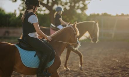 Paseo a caballo para 2 o 4 con opción a menú en Finca Mallaetes (hasta 51% de descuento)