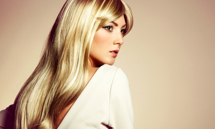 Haircut, Deep Conditioning, and Style with Optional Highlights at City Salon (Up to 69% Off)
