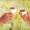 Up to 56% Off Wine-a-Palooza in Saugatuck