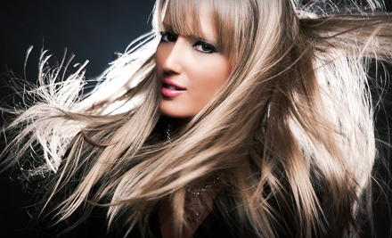 Haircut with Optional Single-Process Color or Partial, One Color Highlights at Elisa's (Up to 55% Off)
