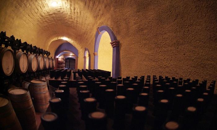 Pago de Almaraes - Pago de Almaraes : Visita Guiada para 2 o 4 personas con cata de 3 vinos y aperitivo desde 19,90 € en Pago de Almaraes