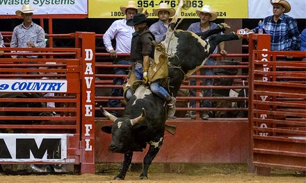 $12 to See the Southeastern Circuit Finals Rodeo at Davie Pro Rodeo Arena on November 6 ($20 Value)
