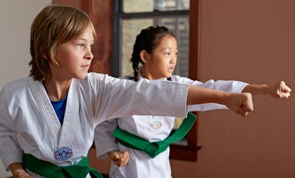8, 16, or 36 <strong>Martial Arts</strong> Lessons with Uniform T-Shirt at Robinson's Taekwondo (Up to 91% Off)