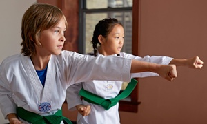 Master Lee's World Champion Tae Kwon Do: Kids' Martial-Arts Classes for 1 or 2, or a Party at Master Lee's World Champion Tae Kwon Do (Up to 92% Off)
