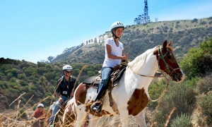 Sunset Ranch Hollywood: $49 for a One-Hour Weekday Horseback Tour for Two from Sunset Ranch Hollywood ($80 Value)