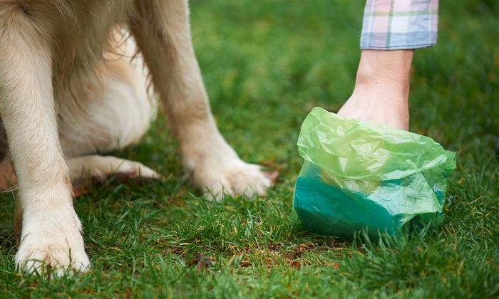 The Advantages of Biodegradable Dog Waste Bags